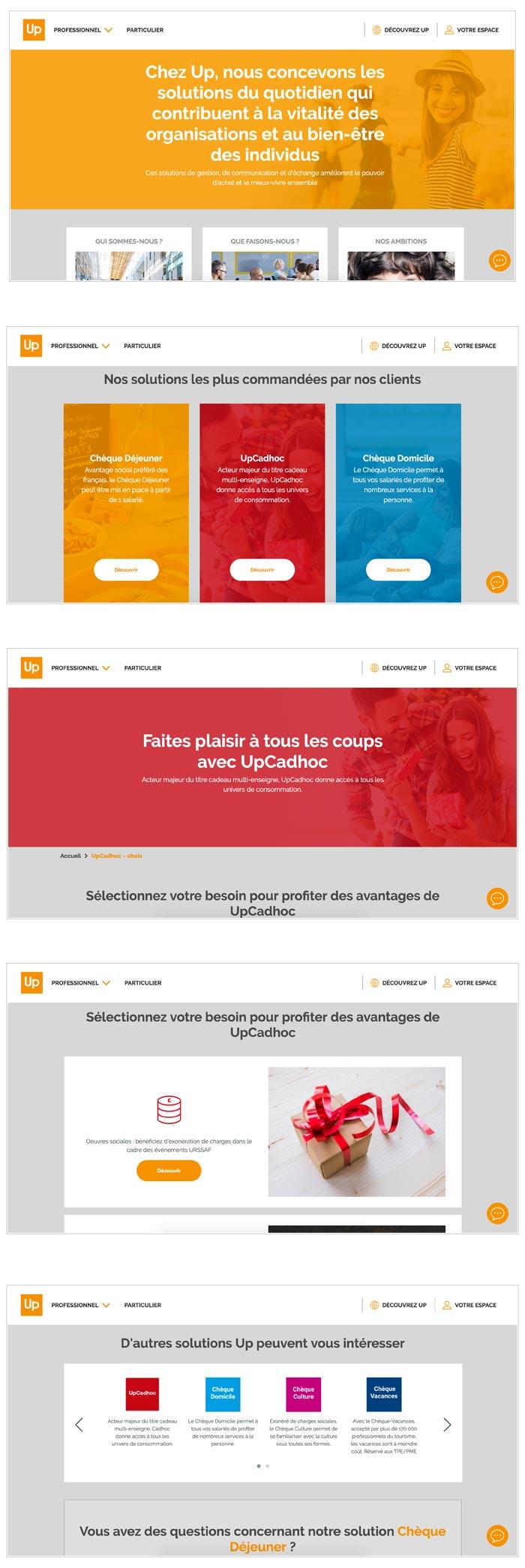 création du site web principal